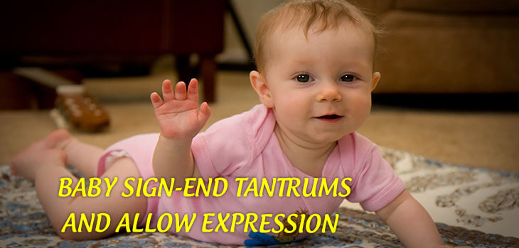Baby Sign End Tantrums and Allow Expression1