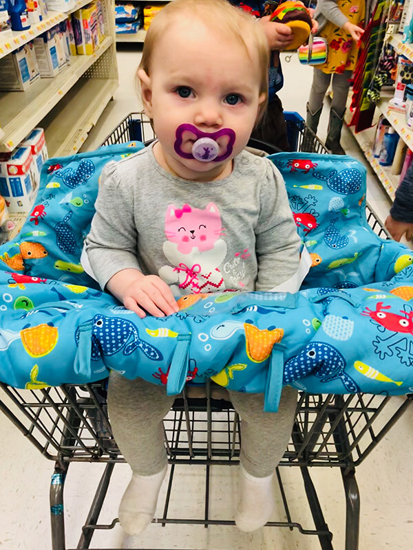 Baby in a Cart