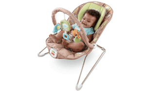 high quality and best Fisher-Price Comfy Time Bouncer