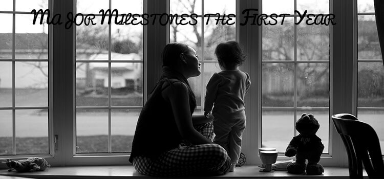 Major Milestones the First Year