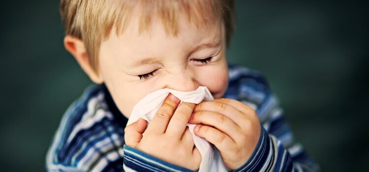 Preventing Seasonal Allergies in Toddlers