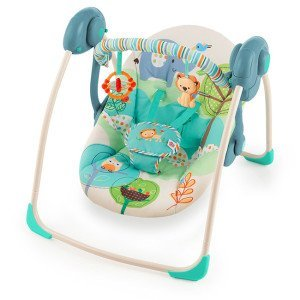 Baby Swings: Fisher-Price Cradle 'n Swing with AC Adapter